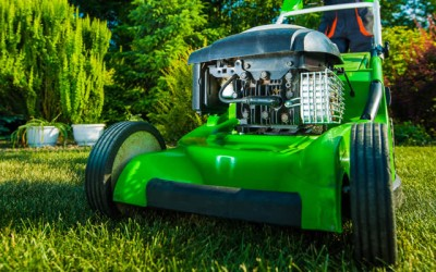 Lawnming Tips