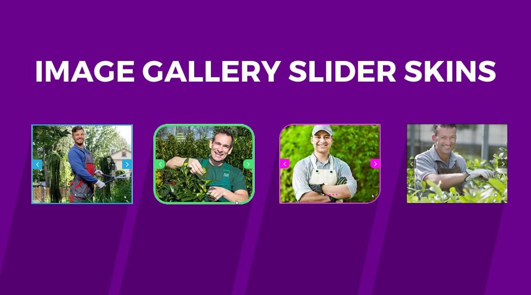 Divi Image Gallery Slider Skins